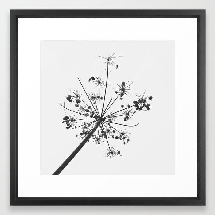 Simply lace art print Marianne Hope